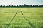 (Français) Mettre en valeur un partenariat industriel dans le domaine des services à l'environnement