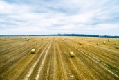 Concurrences d'usages des sols agricoles et forestiers : l'ARENE confie une nouvelle mission d'étude à Nomadéis…