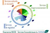 Diagramme MASSE Nomadeis