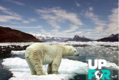 """(Français) Projet """"Up for the Planet"""" : Nomadéis s'implique dans les États Généraux des Générations Futures…"""