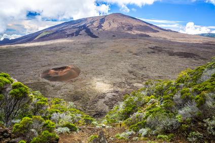 BIOREV Tropics : Nomadéis et ses partenaires remportent l'appel à projets innovants de la DIECCTE La Réunion…