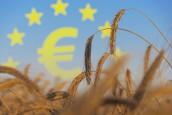 Région Bretagne, innovation et financements européens : Nomadéis sélectionné pour accompagner les porteurs de projets du territoire…