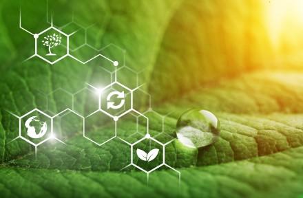 Ecologie industrielle : la CCI de la Marne confie à Nomadéis une étude sur la plateforme industrielle bioéconomie du Nord-Rémois (bioraffinerie de Pomacle-Bazancourt)