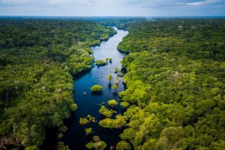 (Français) Impact biodiversité : Nomadéis élargit son offre avec le Global Biodiversity Score™, outil de référence en France et à l'international…