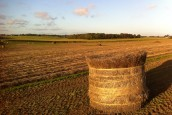 (Français) Energie biomasse : Nomadéis accompagne la filière lin pour la valorisation énergétique de co-produits agricoles en Europe…