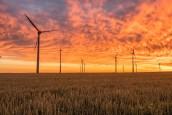 Economie circulaire, matériaux biosourcés et changement climatique : Nomadéis lance BIO-CIRC, son nouveau projet européen Interreg…