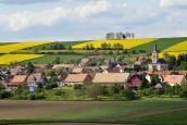 Bioéconomie : La Région Grand Est confie à Nomadéis l'élaboration d'un guide pratique à destination des acteurs locaux…